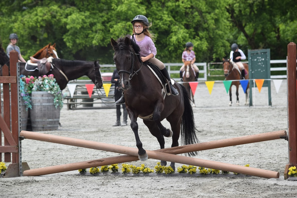 True cost of riding lessons article
